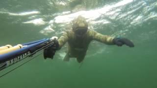 Подводная охота в Норвегии, сентябрь 2013
