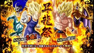610 STONES! CAN WE PULL LR Gohan? SO MANY SSR pulls | DBZ Dokkan Battle Double SSR Rate Banner