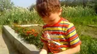 Бегающая гусеница(Сашка нашел волосатую гусеничку, которая весьма резво передвигалась., 2010-09-05T09:56:28.000Z)