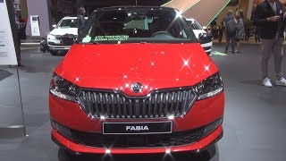 Škoda Fabia HATCH Monte-Carlo 1.0 TSI 110hp DSG7 (2019) Exterior and Interior