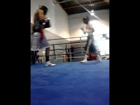 Elite boxing club Reno Nevada