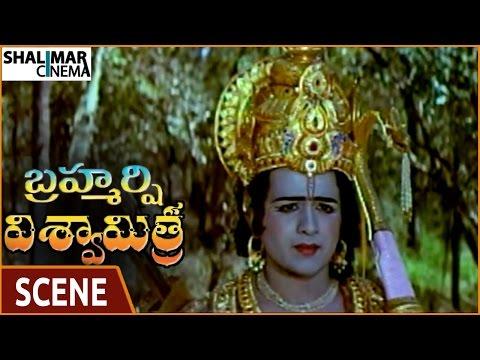 Brahmarshi Viswamitra Movie || NTR Tells Rama To Kill Tataka Scene || NTR || Shalimarcinema