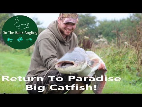"Big Catfish Fishing - ""A Return To Paradise"" - Anglers Paradise"