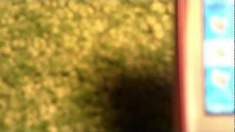 Ylinopeussakko Raja