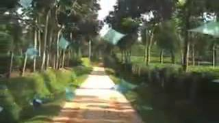 Tajul Imam Bangladesh Sylhet Sunamgonj Region Folk Song  Morile Jeno Pai Tumare