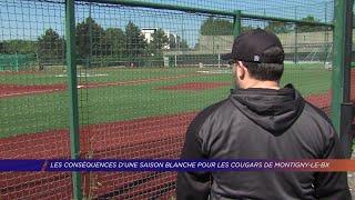 Yvelines | Les conséquences d'une saison blanche pour les cougars de Montigny-le-Bx