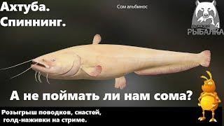В поисках монстра трофейного Сома 1440p Русская рыбалка 4 Russian Fishing 4