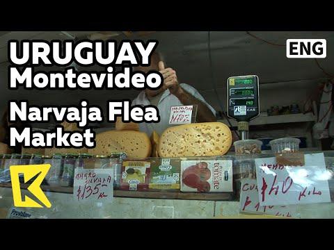 【K】Uruguay Travel-Montevideo[우루과이 여행-몬테비데오]나르바하 벼룩시장/Narvaja Flea Market/Animal/Old man