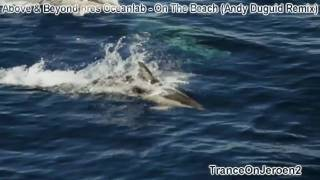 Above & Beyond pres Oceanlab - On The Beach (Andy Duguid Remix) VIDEO Dolphins bubble rings