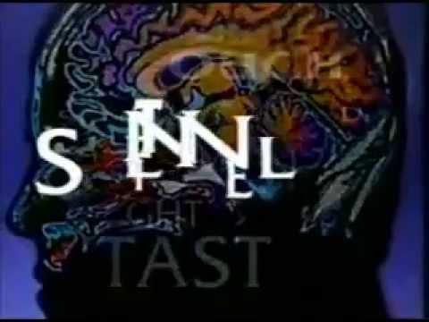The Sentinel TV Series  Series 4  credits