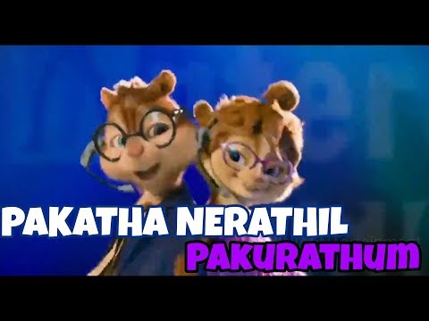 PAKATHA NERATHIL SONG ( Chipmunk Version) - Tamil Watsapp Status