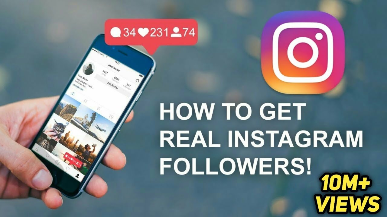 gain more followers on instagram free
