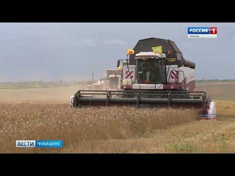 Министр сельского хозяйства Сергей Артамонов: показатель урожайности в Чувашии повышается