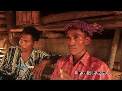 """Architecture Journey """"Berburu & Berguru di Tanah Marapu"""" eps 1"""