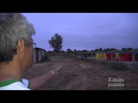 California Napa Earthquake Witness story 4
