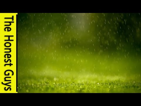 1 Hour Of Gentle Rain - Meditation (without Music)