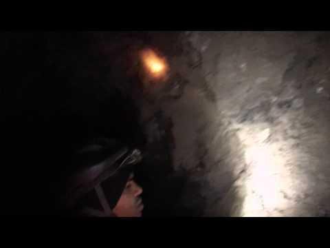 Gurus Go Exploring Mines