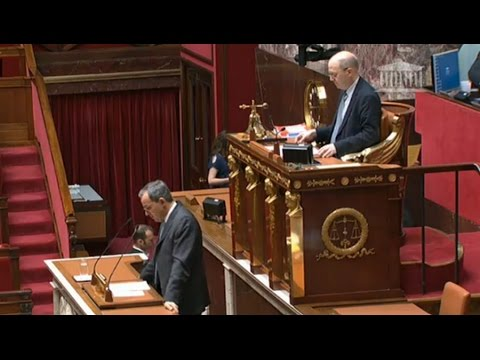 Débat à l'Assemblée nationale sur l'abandon des sanctions contre la Russie (Direct du 28.04.16)