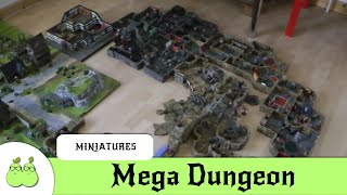 The Mega Dungeon 3D Miniature Project