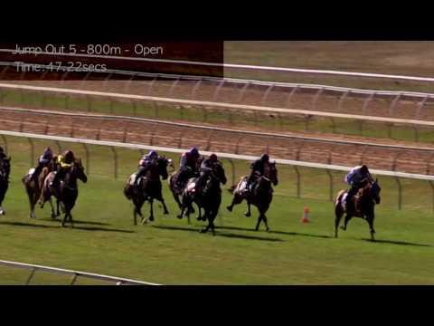Cranbourne Jump Outs 12 Dec   Jump Out 5
