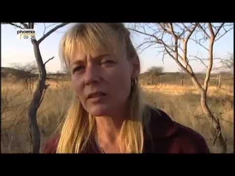 Wunder der Natur   Namibia 2 4 Im Reich der großen Katzen Doku