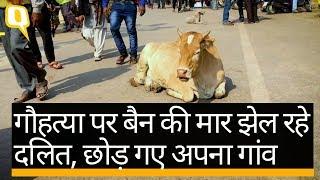 गौहत्या पर बैन से परेशान दलित और किसान | Quint Hindi