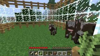 Zagrajmy w Minecraft - Episode 6 - Rozmawiamy ze zwierzętami.... znowu.