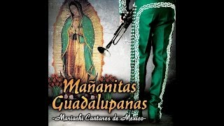 Mariachi Cantares De Mexico - Mi Virgen Bella