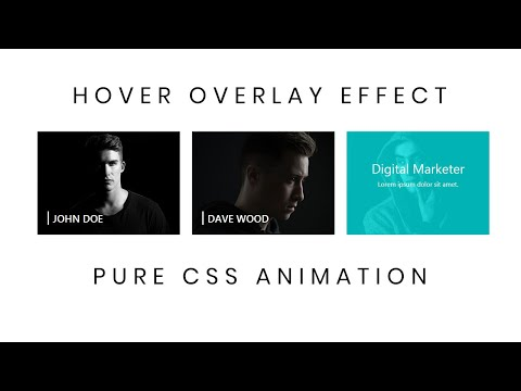 Pure CSS Image Overlay Effect | CSS Image Hover Effects