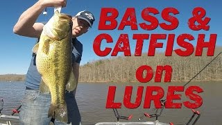 fishing for bass and catfish with lures swim baits and jigs for giant fish