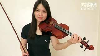 Passenger - Let Her Go(Violin Cover)