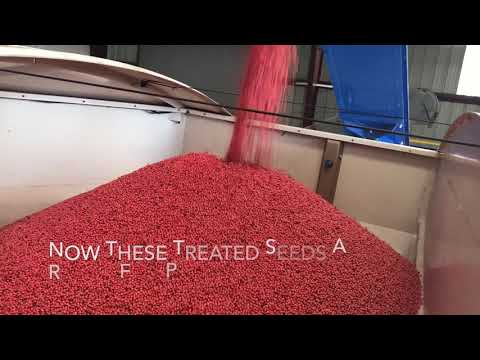 Soybean Seed Treatment