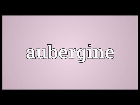 Aubergine Meaning