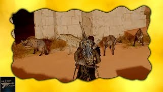 Assassin's Creed Origins Funny Moment - Hyena's Waiting For The Toilet
