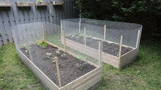 Gambar cover How to Build Raised Garden Beds DIY - Thrift Diving