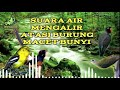 Relaksasi Suara Air Dan Suara Burung Asli Alam Liar  Mp3 - Mp4 Download