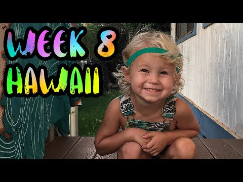 Rent a Beach House on North Shore in Hawaii!! /// WEEK 8 : Oahu, Hawaii