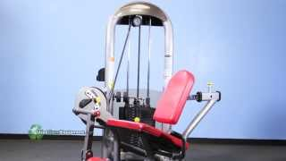 Video Refurbished Matrix G3 Leg Extension Gym Equipment download MP3, 3GP, MP4, WEBM, AVI, FLV Oktober 2018