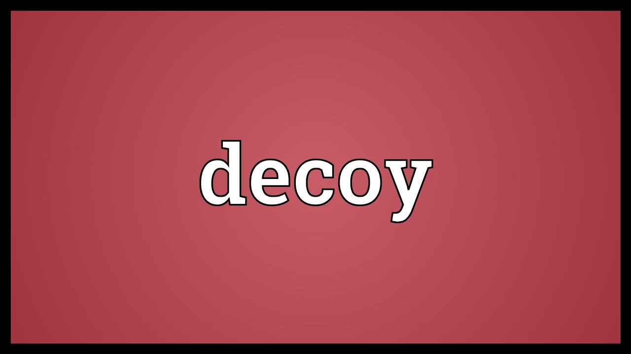Decoy Meaning