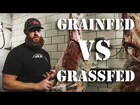 Grass Fed Beef vs Grain Fed Beef (What's the Difference)   The Bearded Butchers