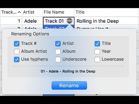Batch renaming of music from metadata on Mac OS with Tag Editor by Amvidia