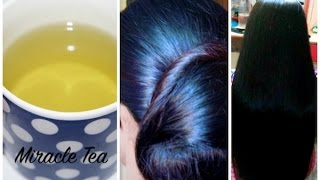 Miracle Tea to Make Hair Grow Fast, Thick, Long & Black Naturally in 20 Days