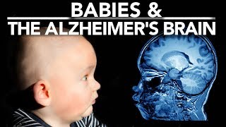 What can Babies tell us about Alzheimer's?