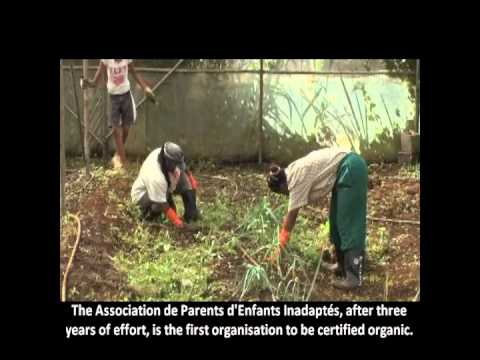 FORENA : spearheading the organic farming movement in Mauritius