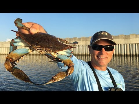 Hot crabbing action with amazing underwater footage