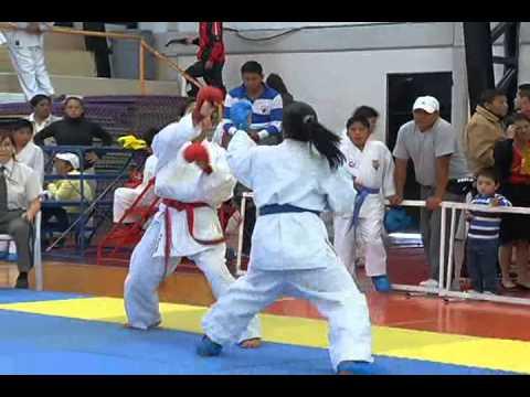 club de karate do fenix