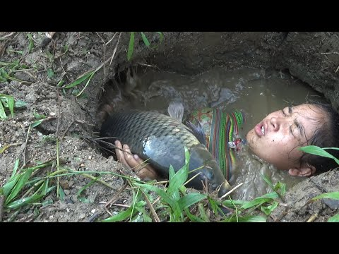 Survival skills: Build fish trap from deep hole catch big carp - Cooking delicious fish