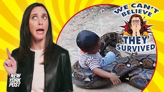 Toddler cheats death by cuddling up to a gigantic python | New York Post
