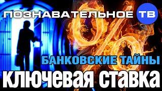 Банковские тайны: Ключевая ставка (Познавательное ТВ, Дмитрий Еньков)