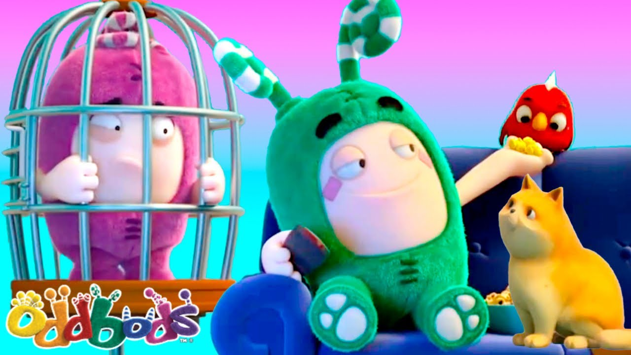 FURRY FRIENDS | Oddbods | Cartoons for Babies & Kids